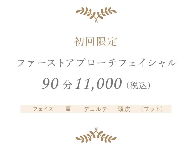 ファーストアプローチフェイシャル90分10,000円